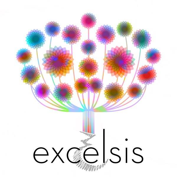 EXCELSIS: Contemplating extremity